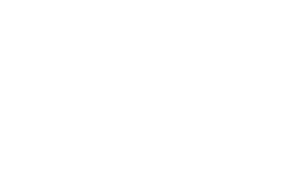 McLane Intelligent Solutions